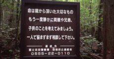 【衝撃】富士の樹海で自殺しようとしてる若い女に声かけた結果wwwwwwwwwwwwwwwwww